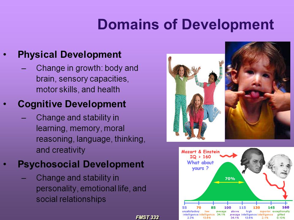essay cognitive language social and emotional physical development domains