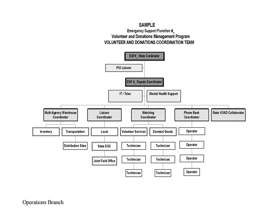 Sample organizational chart for a State Volunteer and Donations Coordination Team.