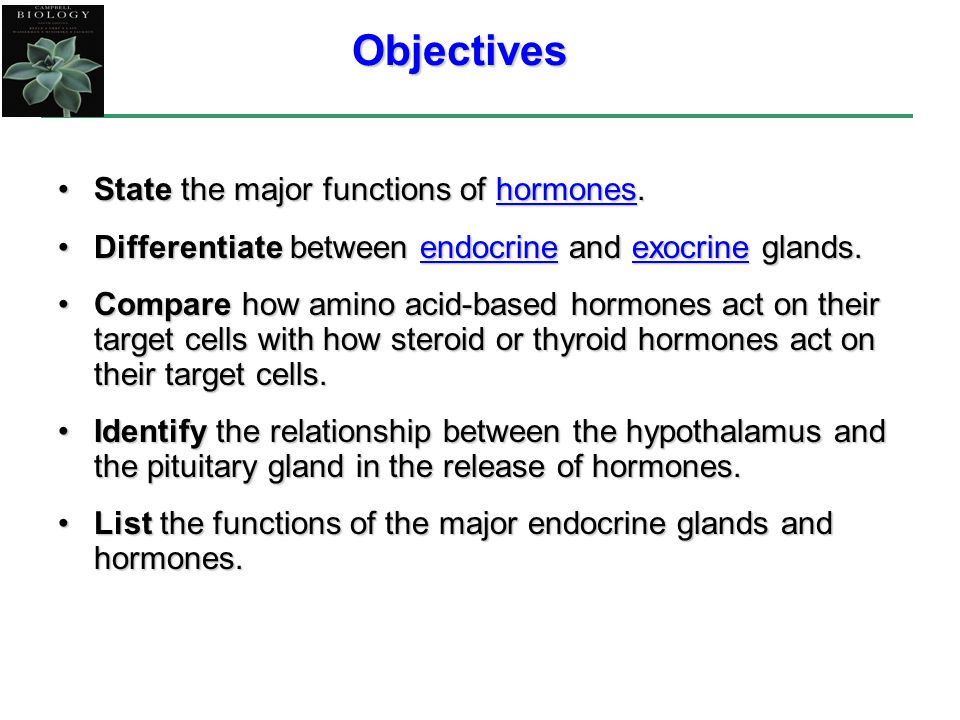 list of hormones and their functions pdf