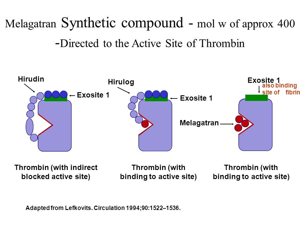 Melagatran Synthetic compound - mol w of approx 400 -Directed to the Active Site of Thrombin