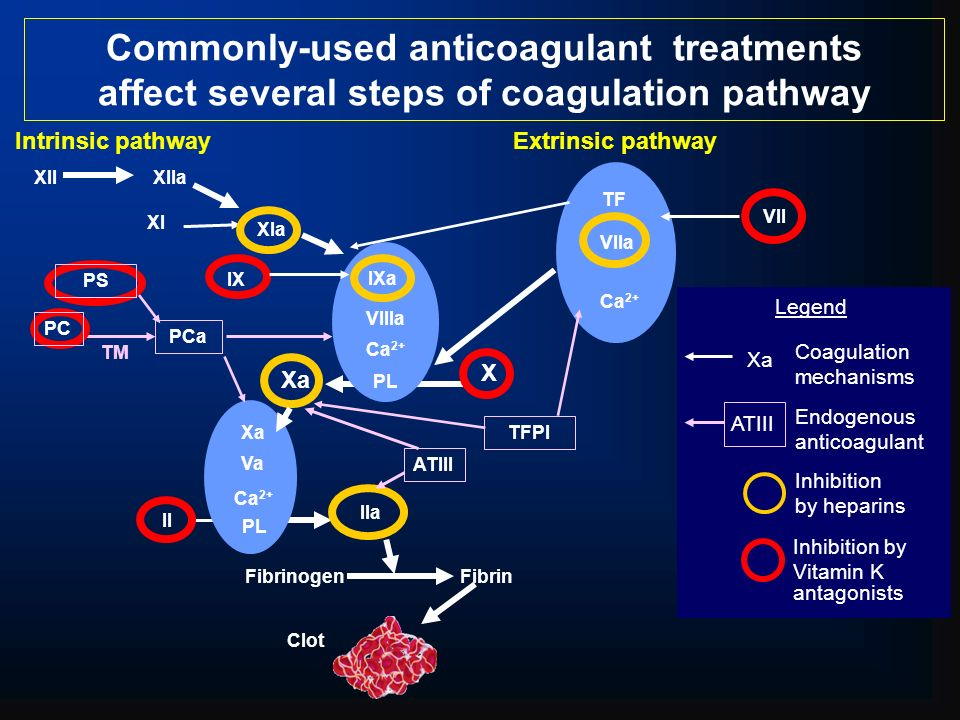 Commonly-used anticoagulant treatments affect several steps of coagulation pathway