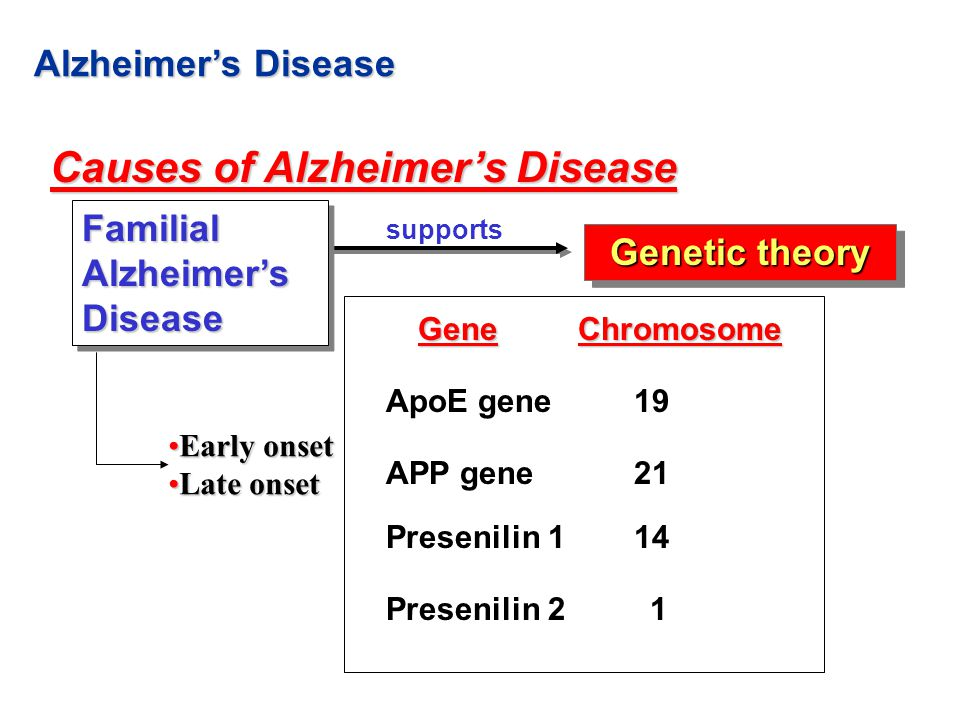 biological causes of alzheimers disease Alzheimer's is a disease that causes dementia  someone will develop the disease, only that their risk is higher than those with a different genetic make-up.