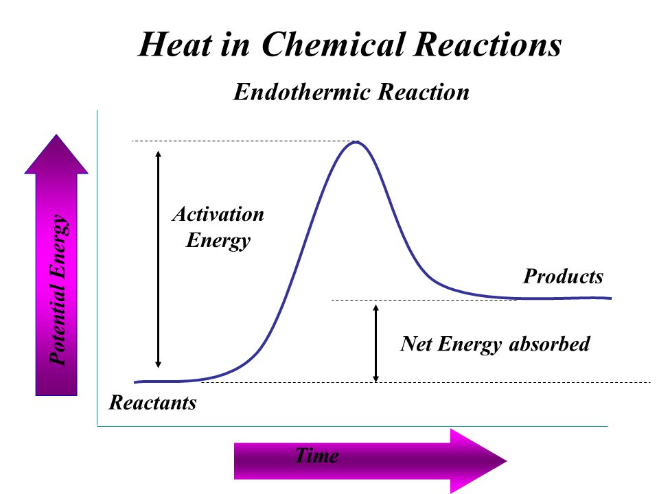 chemical reaction essay