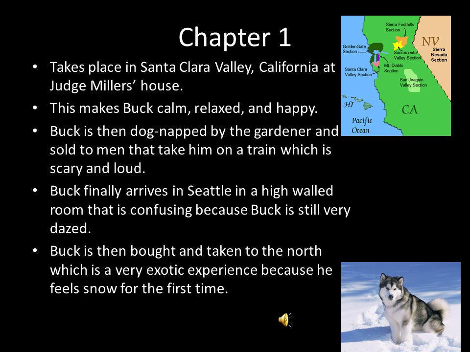 jack london call of the wild pdf
