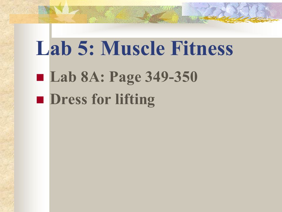 lab 5 weightlifting Fitness lab schedule & information open to the  id and appropriate workout  clothes are required  monday 11:00 am - 12:00 pm & 3:00 pm - 5:00 pm.