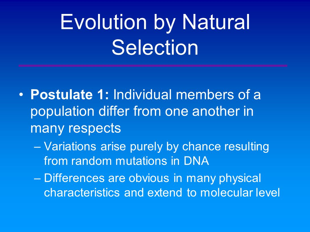What Are The Four Postulates Of Natural Selection