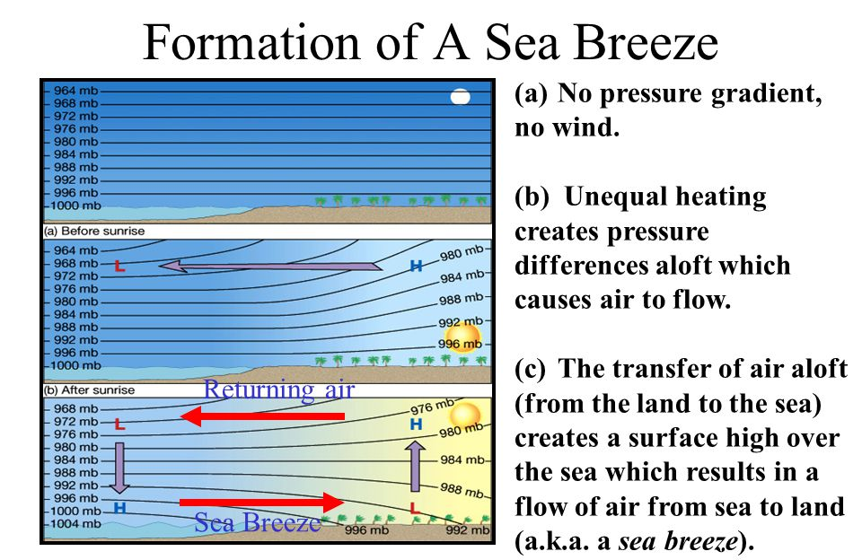 Formation of A Sea Breeze