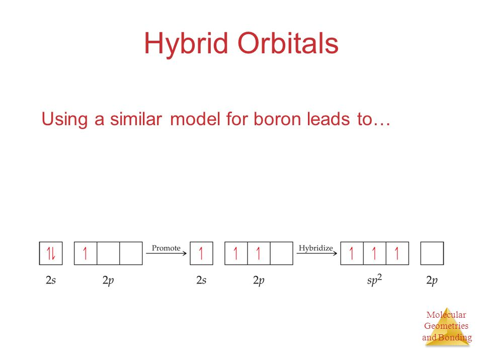 Hybrid Orbitals Using a similar model for boron leads to…
