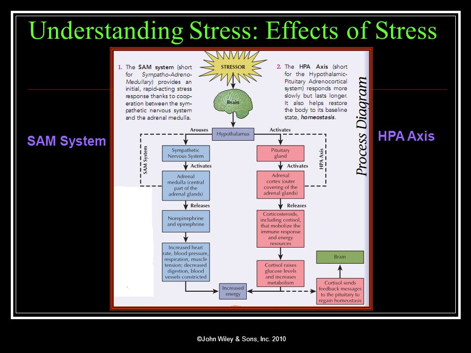 effects of stress on health pdf