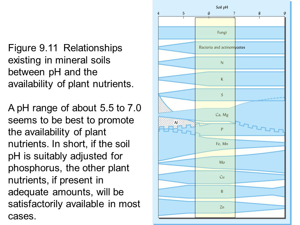 Causes remediation and implications ppt video online for Minerals present in soil