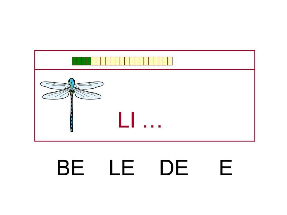 LI … BE LE DE E