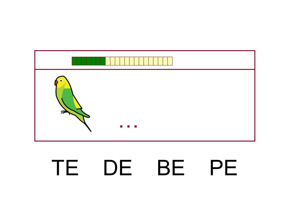 … TE DE BE PE
