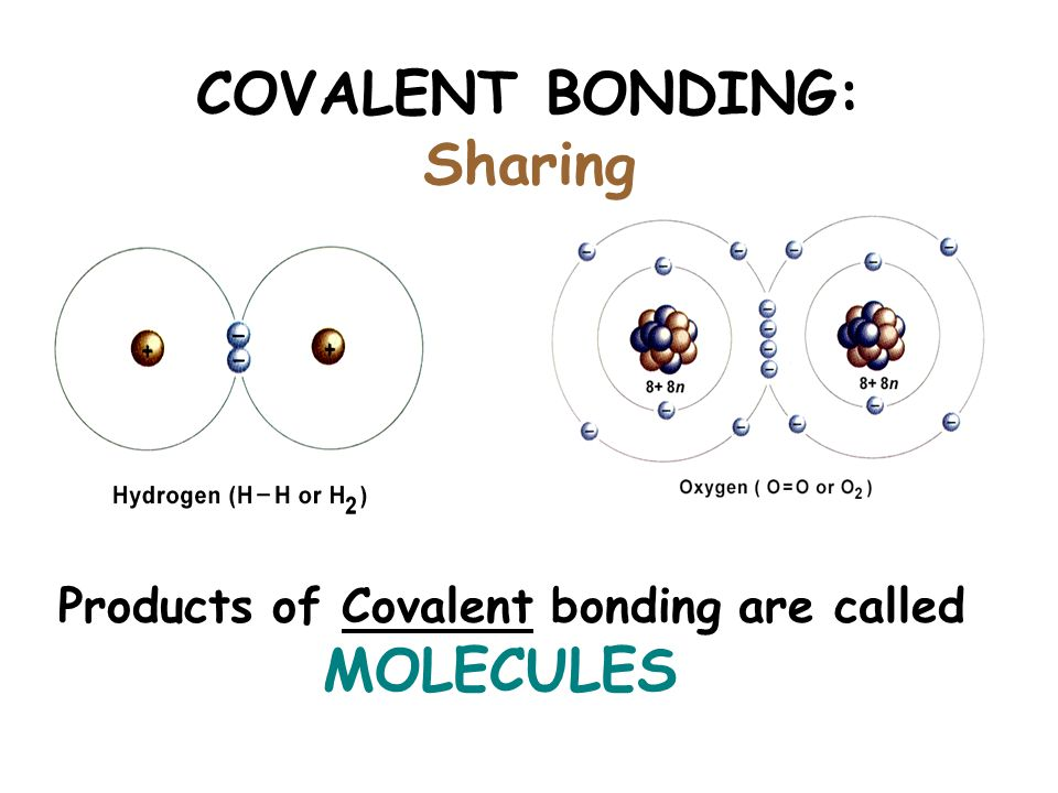 The Chemical Context Of Life Atoms Bonding Molecules