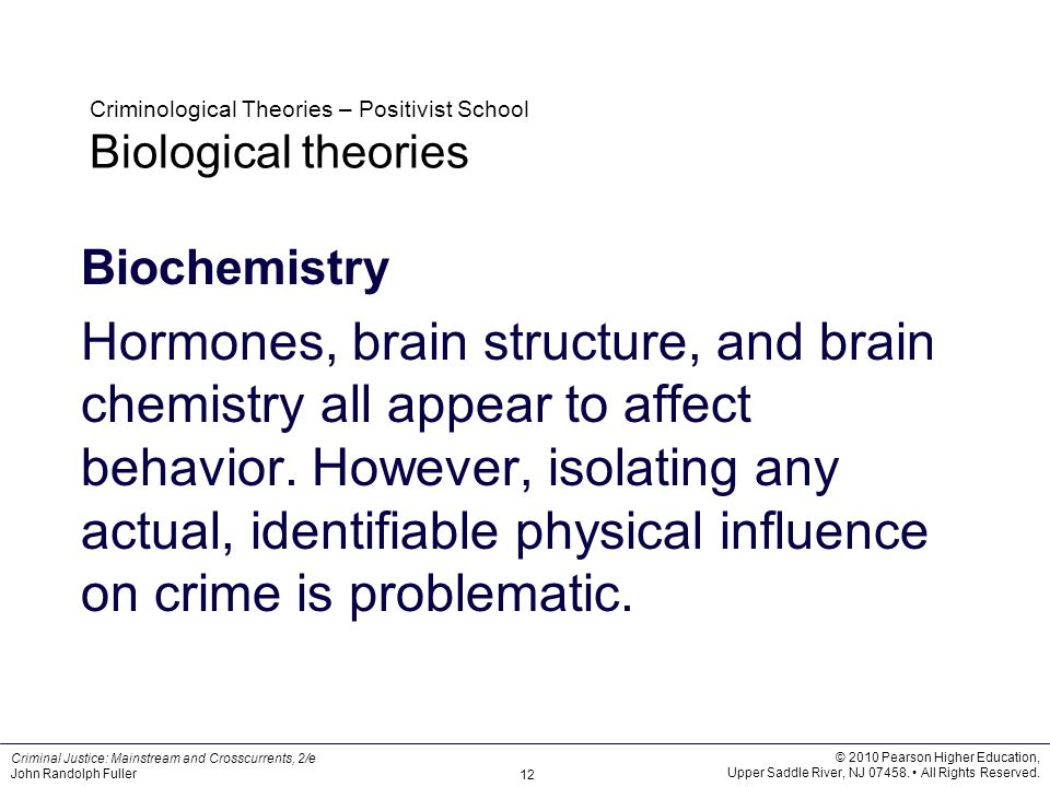 theories and perspectives in biology biochemistry Biological perspective links the studies of biology and psychology what is the biological perspective updated on january 11, 2018 teresa coppens the development of these theories required a unifying perspective explaining the connection between psychology and physiology.