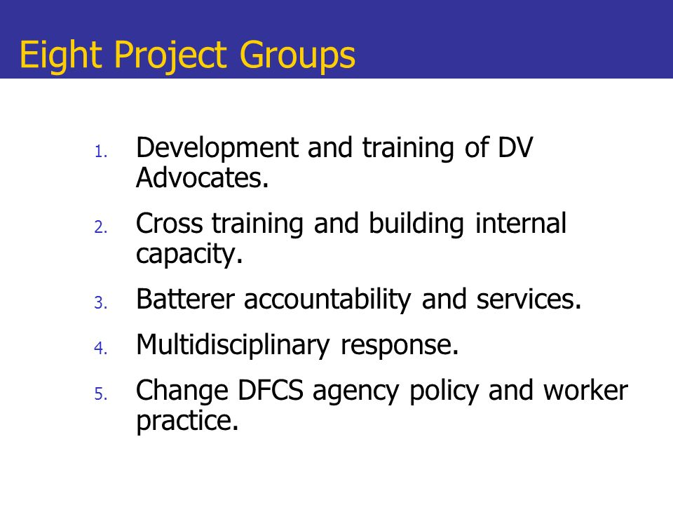 Eight Project Groups Development and training of DV Advocates.