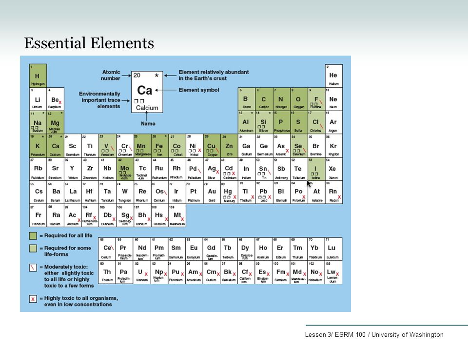 essential elements required for the formation The importance of essential elements required for the formation of a  essential elements of contracts  of key elements in the formation of.
