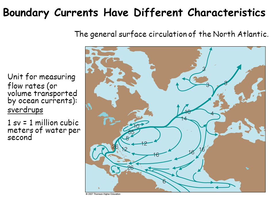 Boundary Currents Have Different Characteristics