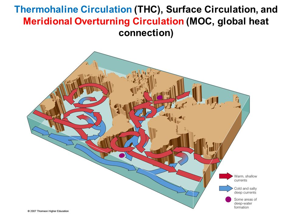 Thermohaline Circulation (THC), Surface Circulation, and Meridional Overturning Circulation (MOC, global heat connection)