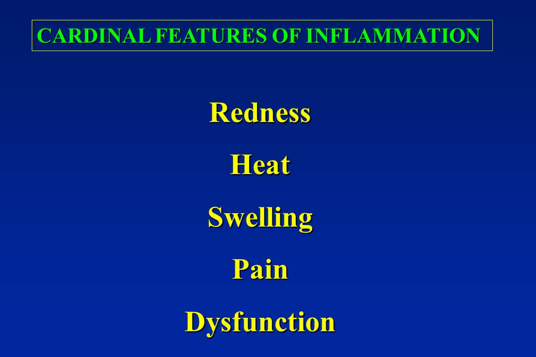 Redness Heat Swelling Pain Dysfunction