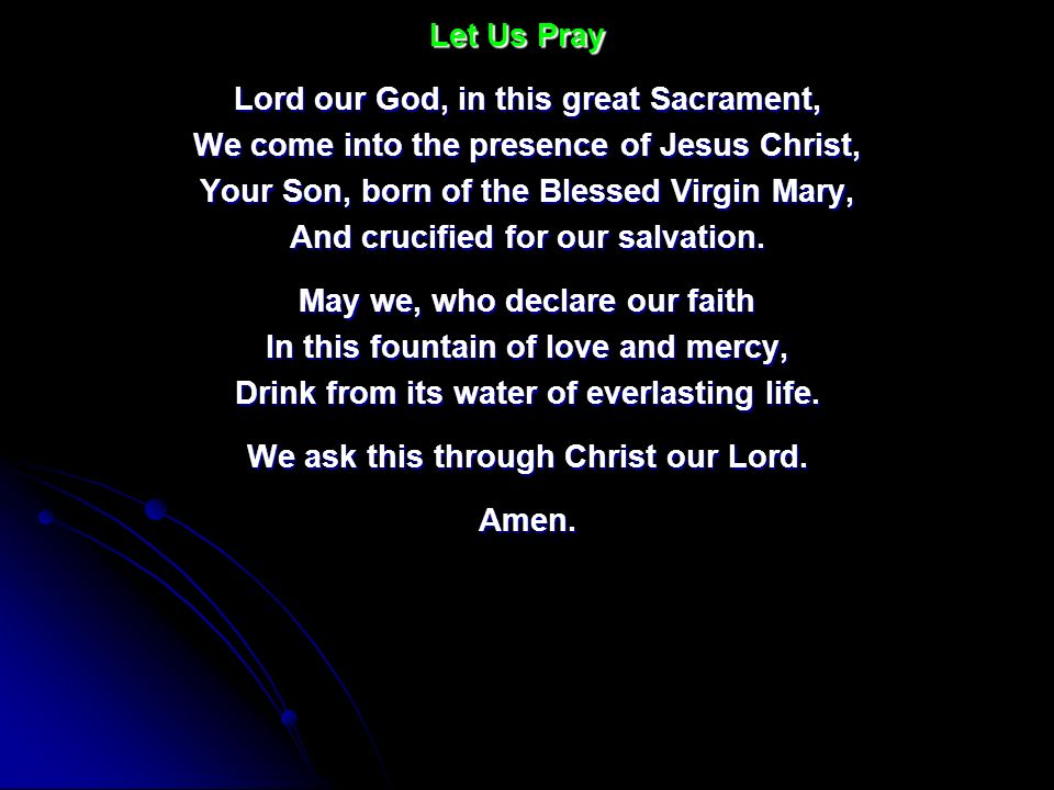Lord our God, in this great Sacrament,