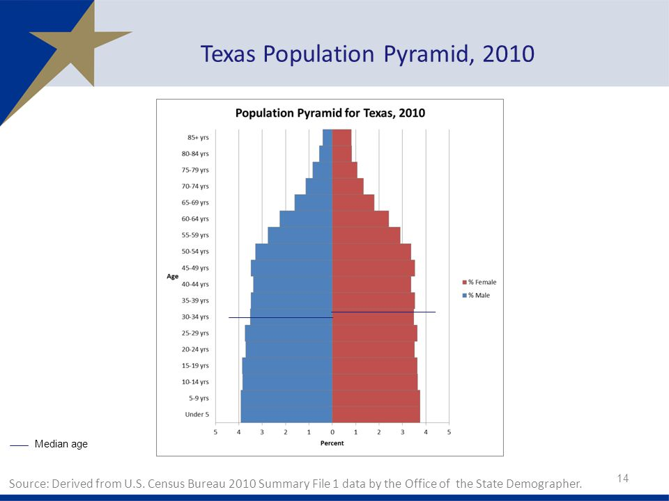 Texas Population Pyramid, 2010