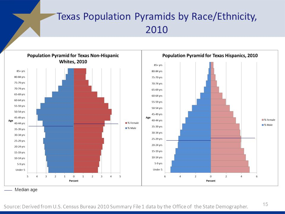 Texas Population Pyramids by Race/Ethnicity, 2010