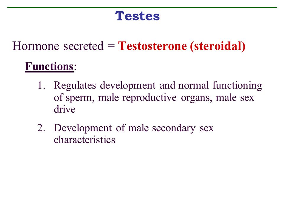 Testes Hormone secreted = Testosterone (steroidal) Functions: