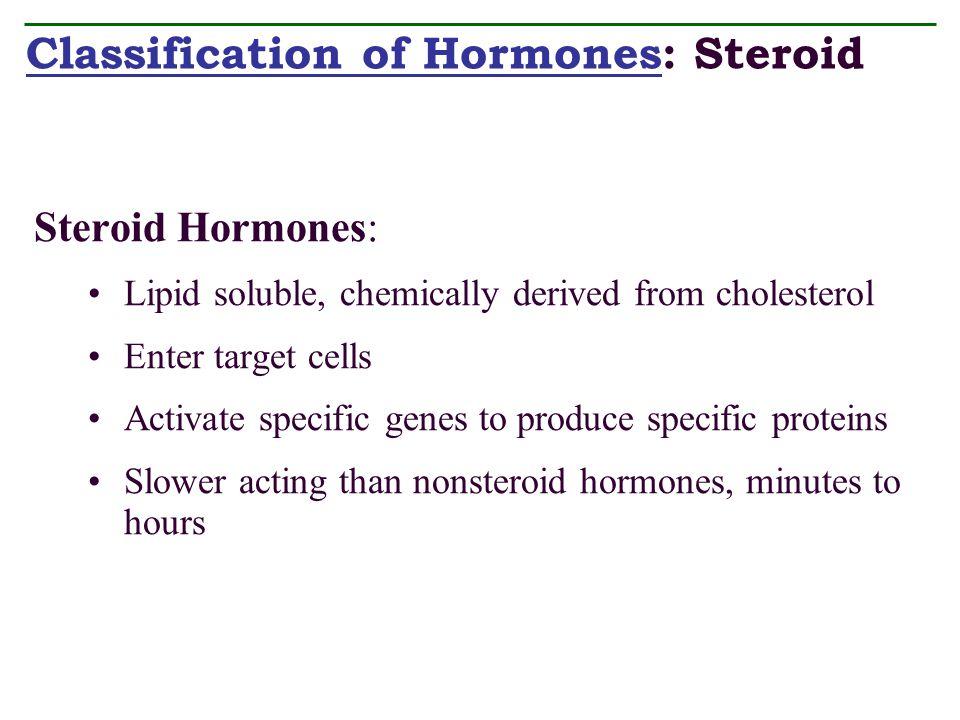 endocrine system chp ppt video online download