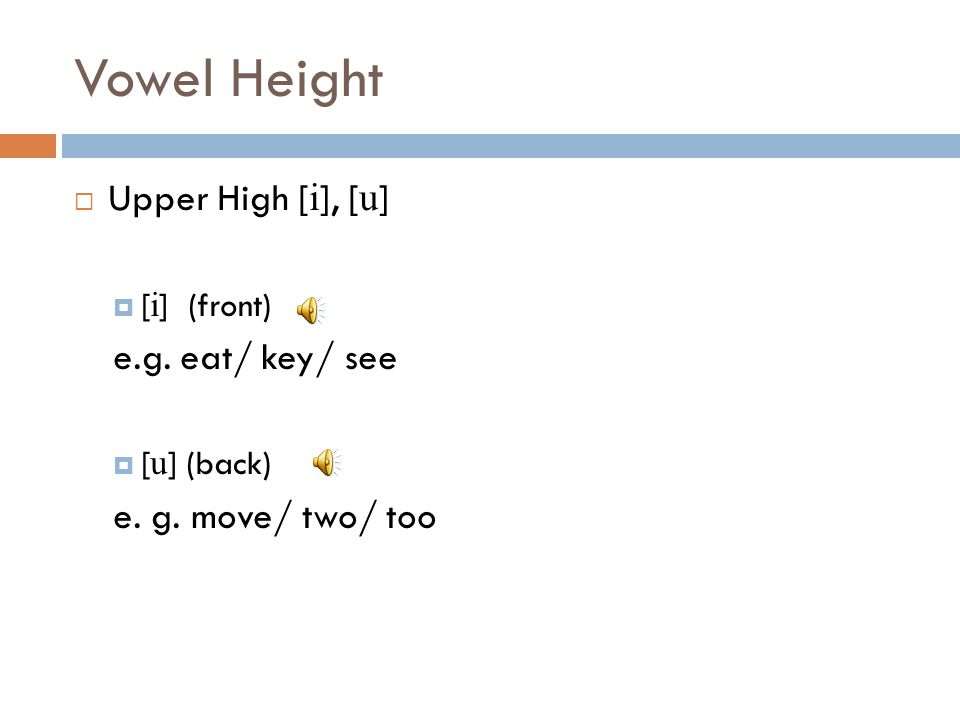 Vowel Height Upper High [i], [u] e.g. eat/ key/ see