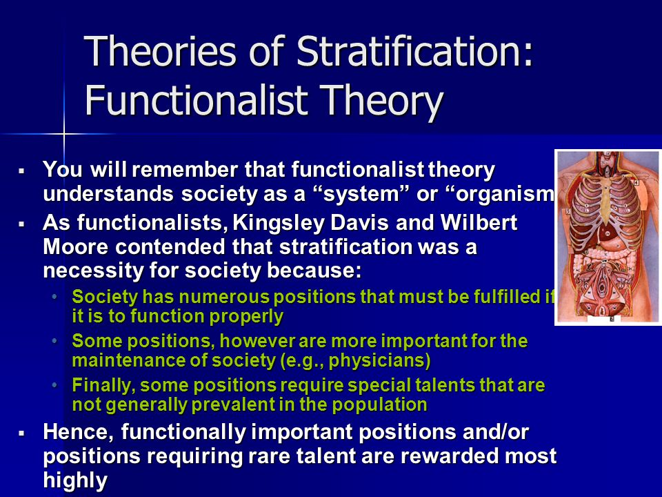 the functionalist theory of stratification is Extracts from this document introduction what are the functionalist, conflict and symbolic interactionist theory of stratification if sociology was defined by.