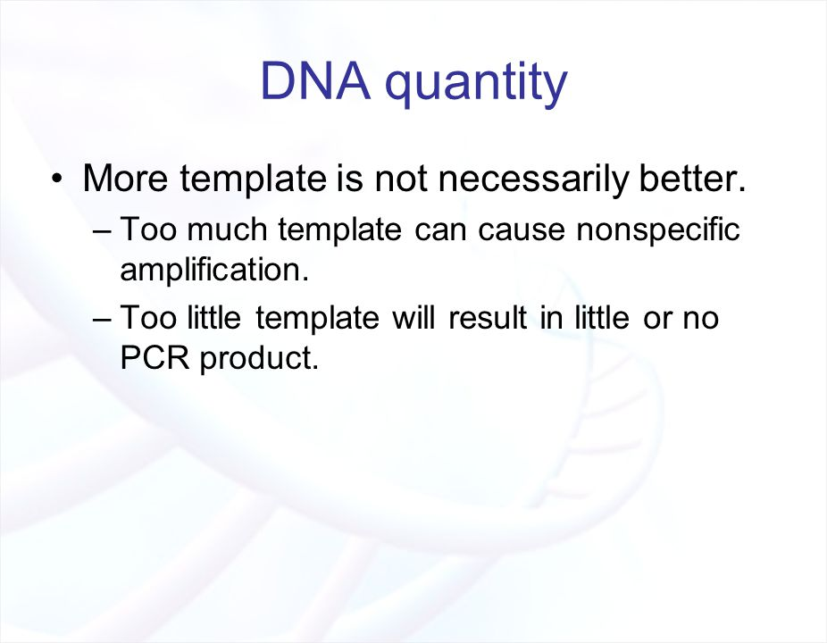 The polymerase chain reaction pcr ppt video online for How much template dna for pcr