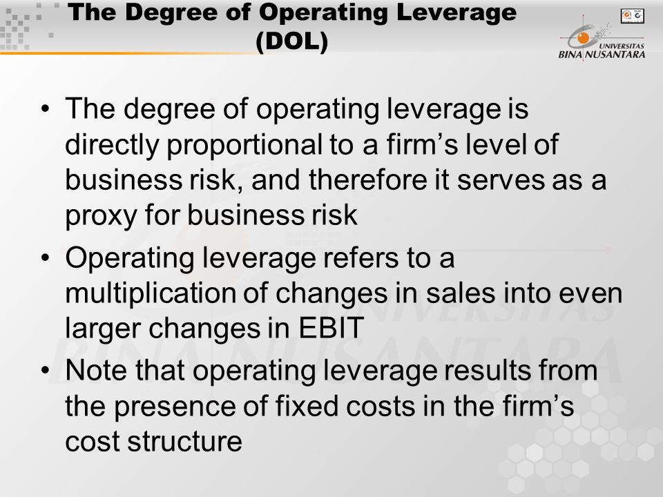 the degree of operating leverage essay