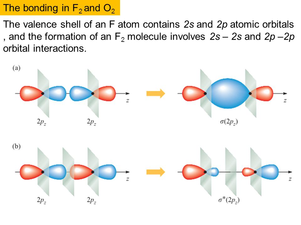 Basic concepts: molecules - ppt download