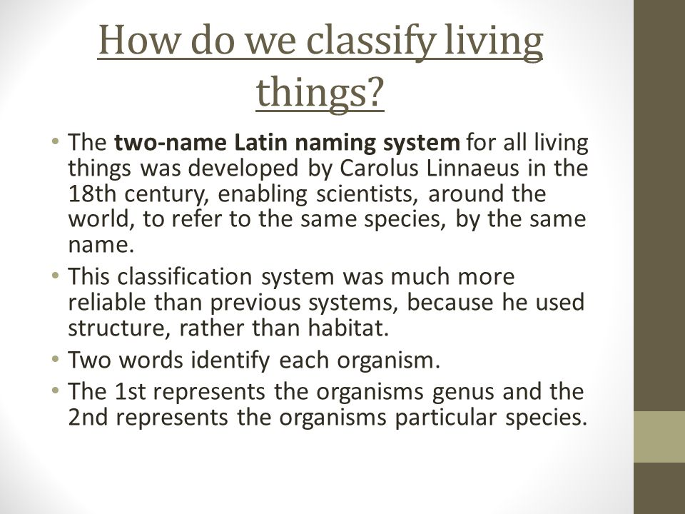 the advantages of classifying organisms Advantages of classifying organisms what are the advantages of classifying organisms in science, the practice of classifying organisms is called taxonomy (taxis means arrangement and nomos means method).