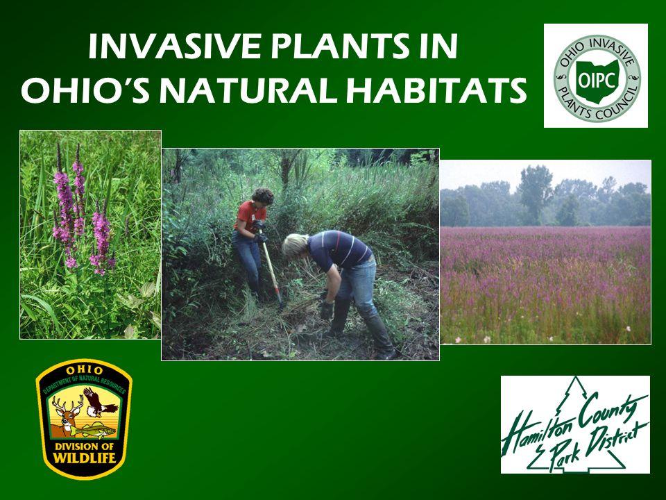OHIO'S NATURAL HABITATS