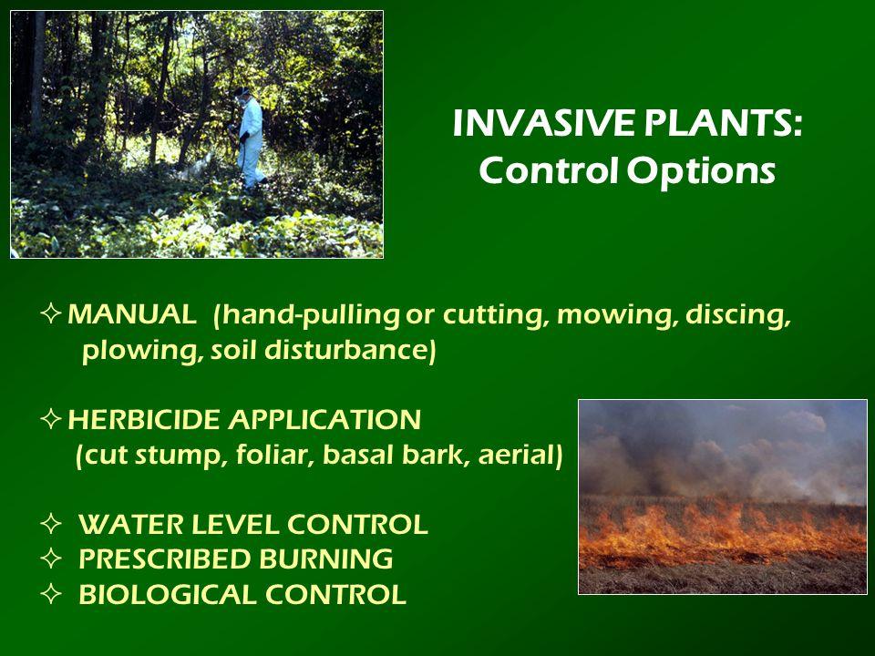 INVASIVE PLANTS: Control Options
