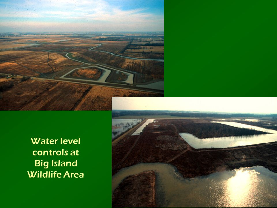 Water level controls at Big Island Wildlife Area