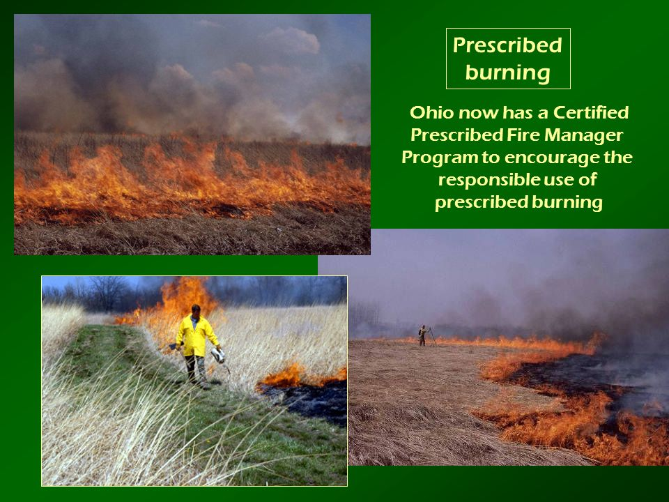 Prescribed burning Ohio now has a Certified Prescribed Fire Manager