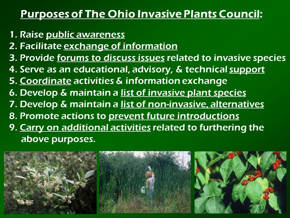 Purposes of The Ohio Invasive Plants Council: