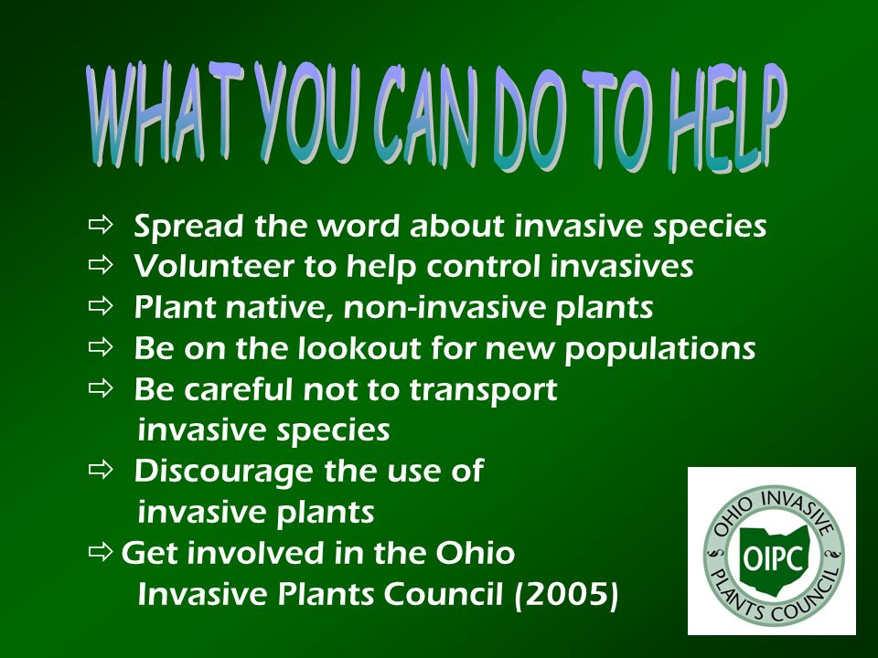 WHAT YOU CAN DO TO HELP  Spread the word about invasive species