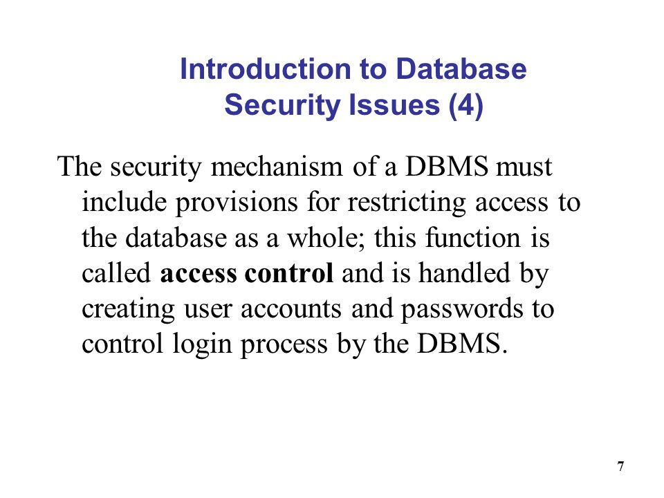 Introduction to Database Security Issues (4)