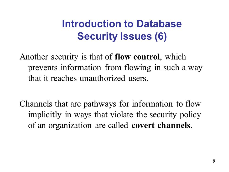 Introduction to Database Security Issues (6)