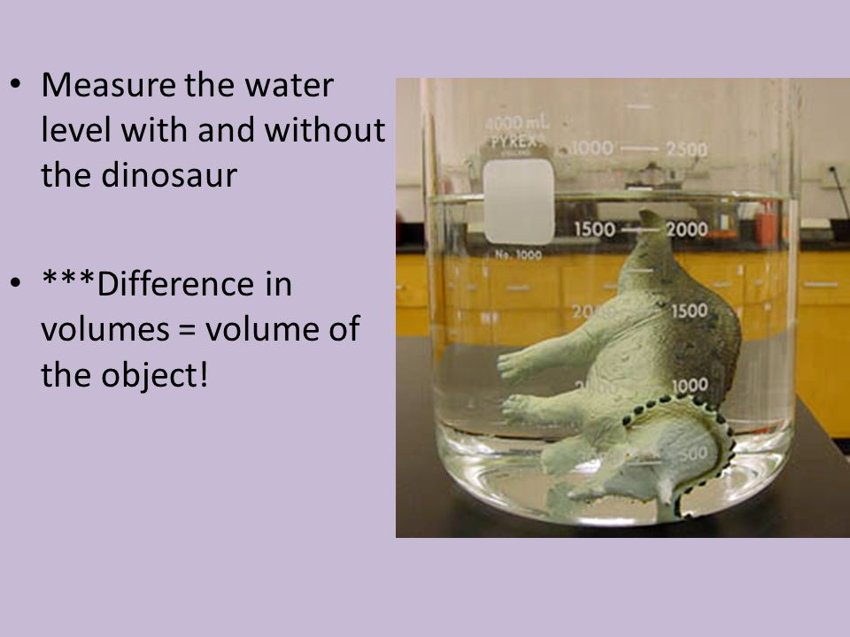 Measure the water level with and without the dinosaur