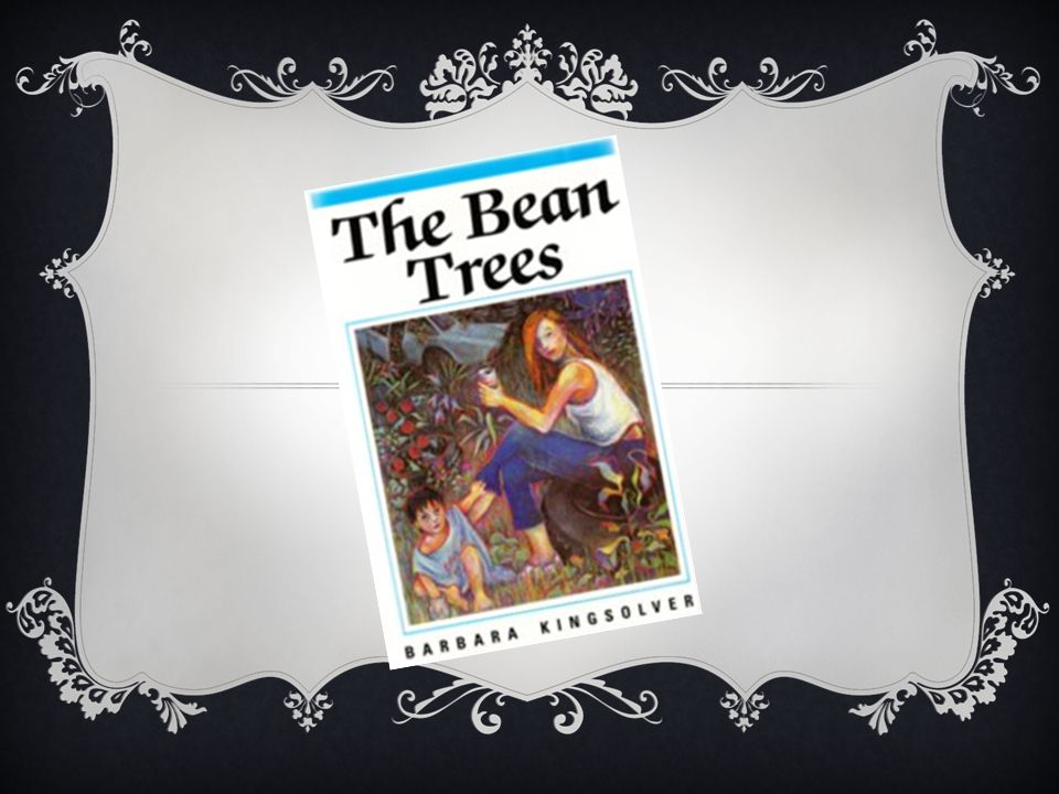 critical essay on the bean trees Critical analysis of the bean trees by barabara kingsolver a women can undertake a journey for many reasons: to escape, to seek a new way of life, to find adventure, to find love, to discover oneself or to simply keep moving.