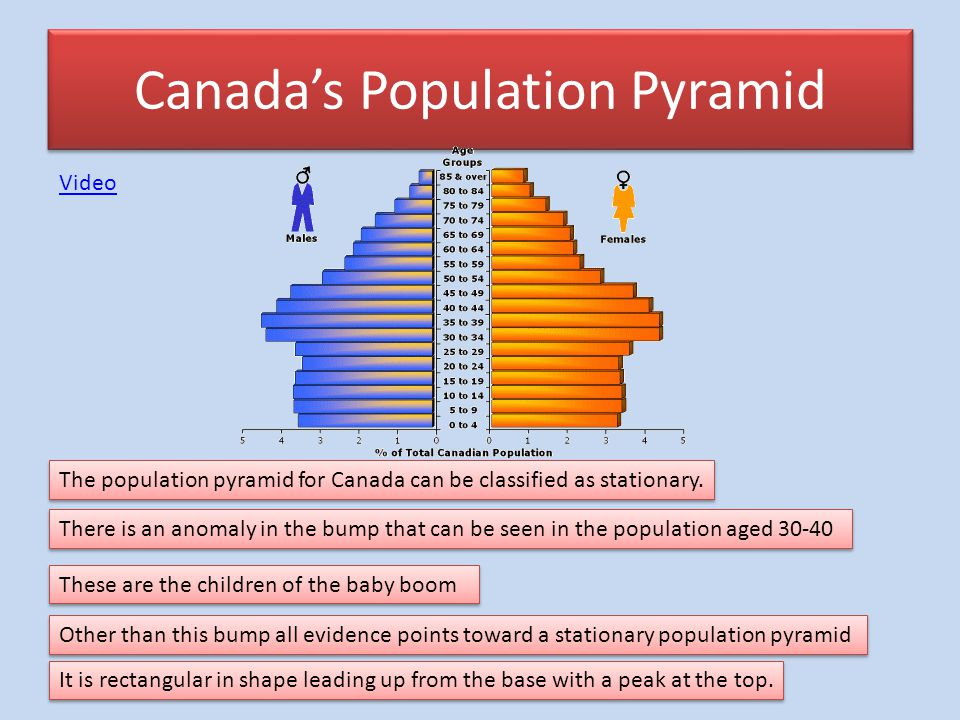 canadians aging population essay Population aging: growth in canada's senior population              9  contribution of population aging to increases in public-sector.