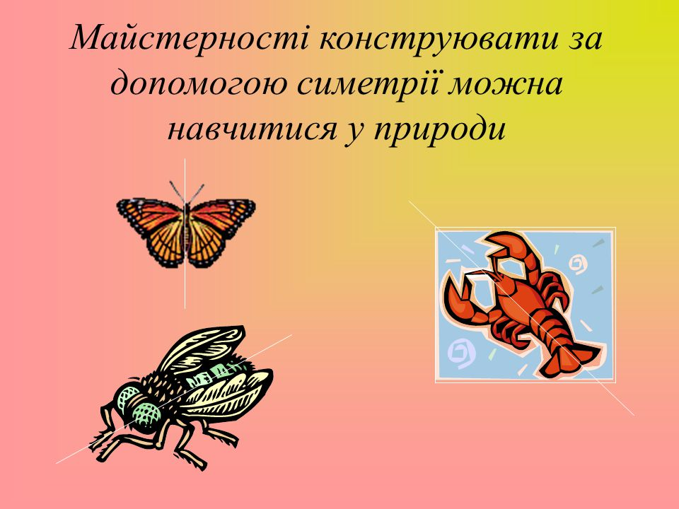 Майстерності конструювати за допомогою симетрії можна навчитися у природи