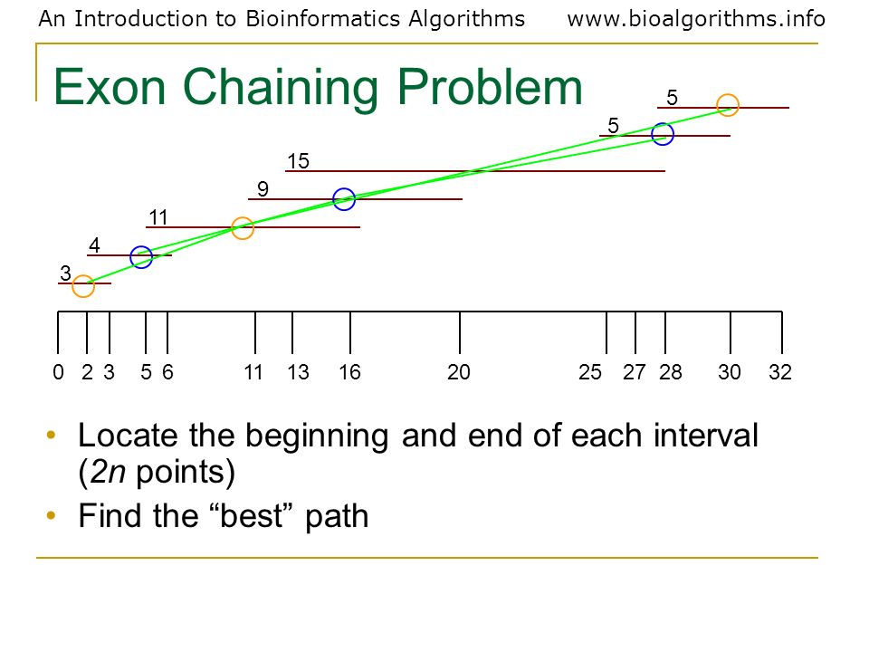 Exon Chaining Problem3. 4. 11. 9. 15. 5. 2. 6. 13. 16. 20. 25. 27. 28. 30. 32. Locate the beginning and end of each interval (2n points)