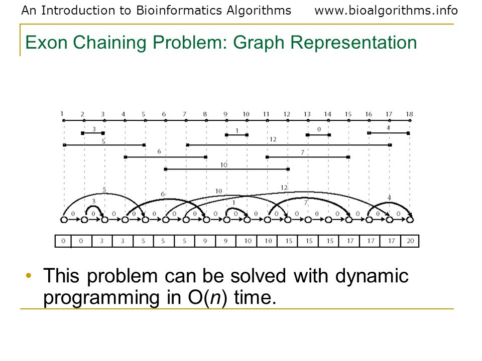 Exon Chaining Problem: Graph Representation