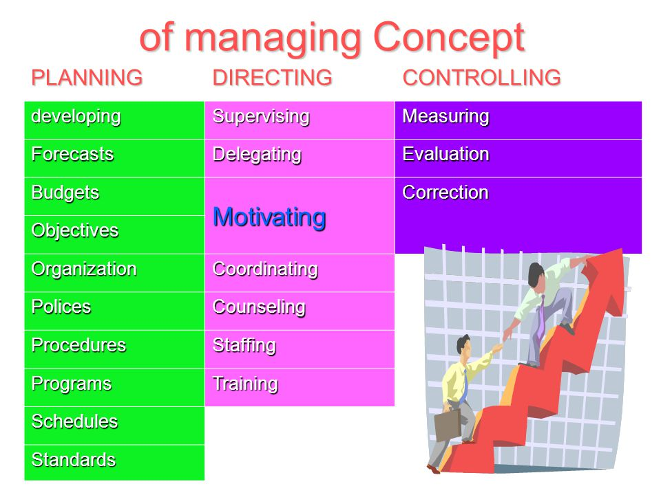 directing and controlling in management pdf