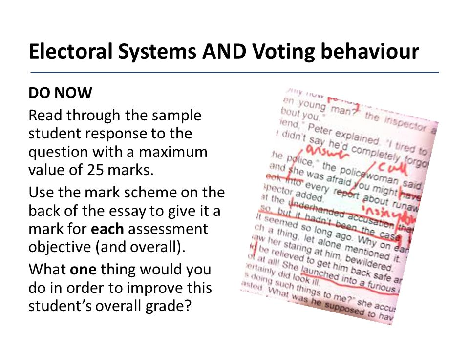 texas election system essay